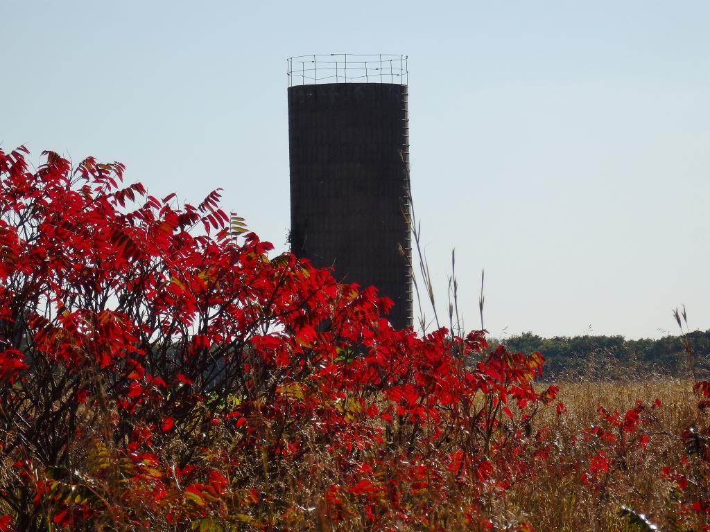 contrast silo