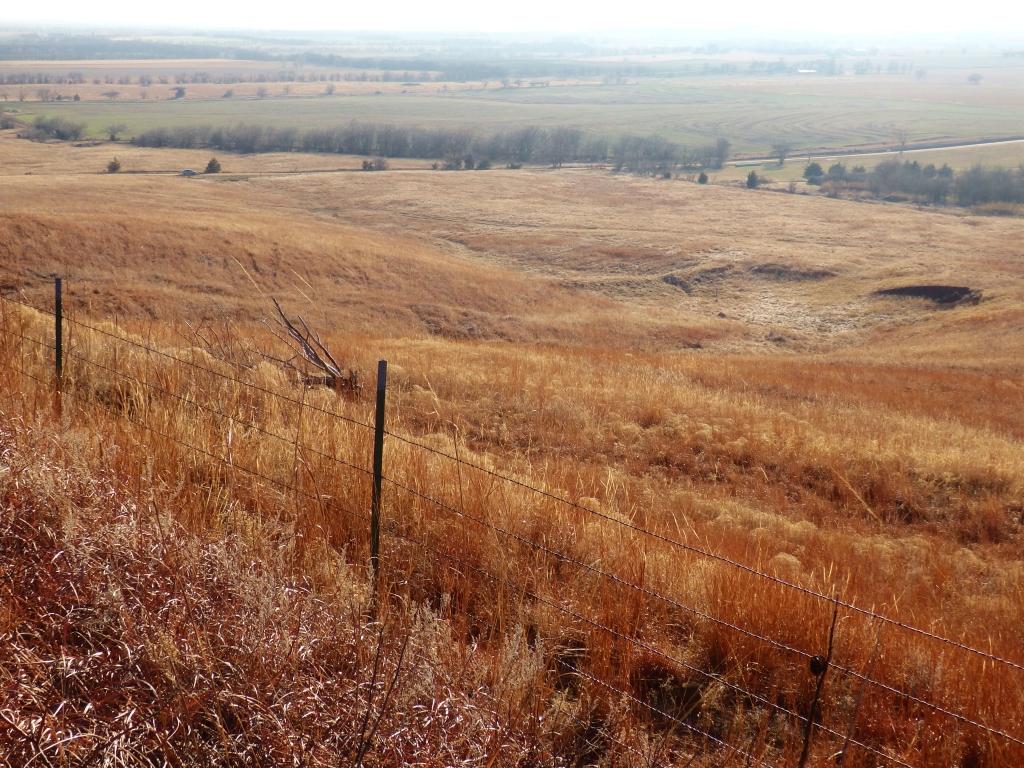 field contour scape