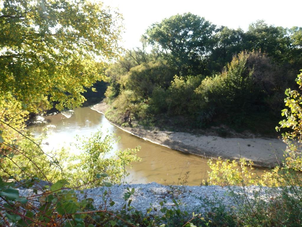 river scape