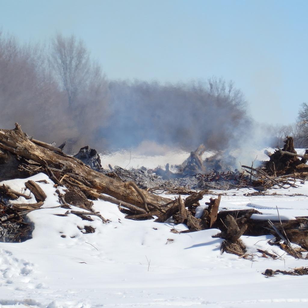 smoke and snow logs