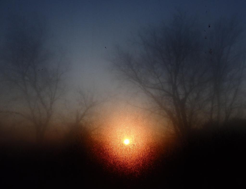 moistured sunrise